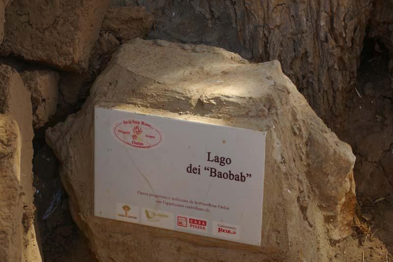 targa baobab