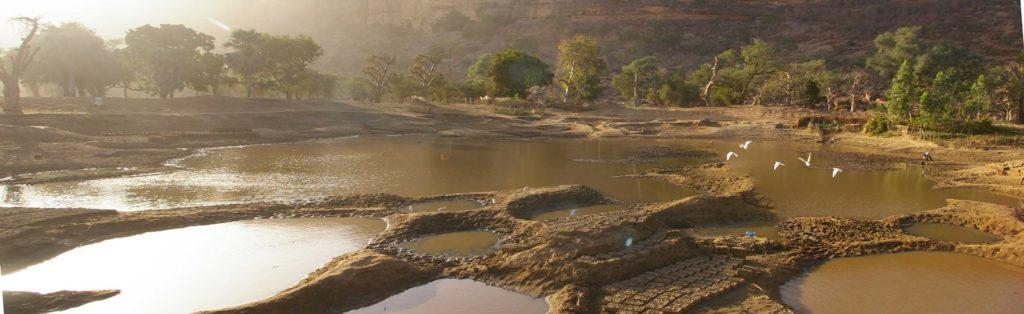 panoramica baobab